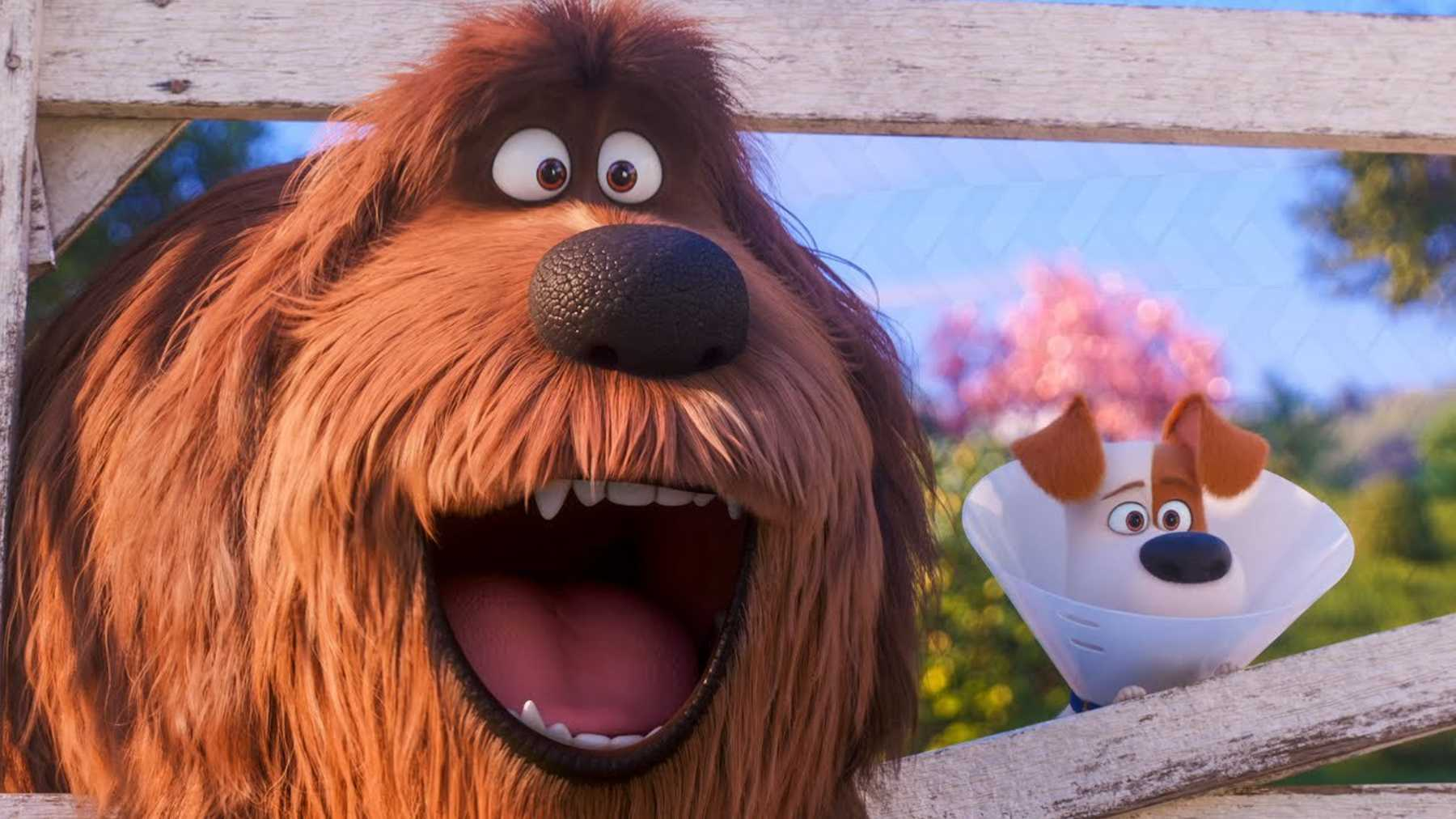 New Trailer For The Secret Life Of Pets 2 Movies Empire