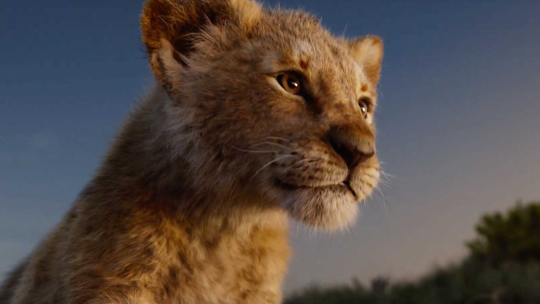 New Character Posters For The Lion King Online Movies Empire