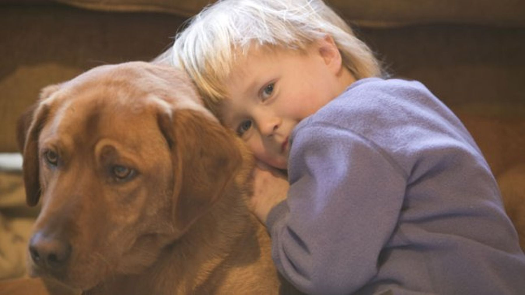 When a 6-year-old boy had to say goodbye to his pet dog, his