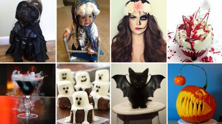 From Pet Costumes To Spooky Treats The 47 Best Halloween Diy Projects On Pinterest Closer