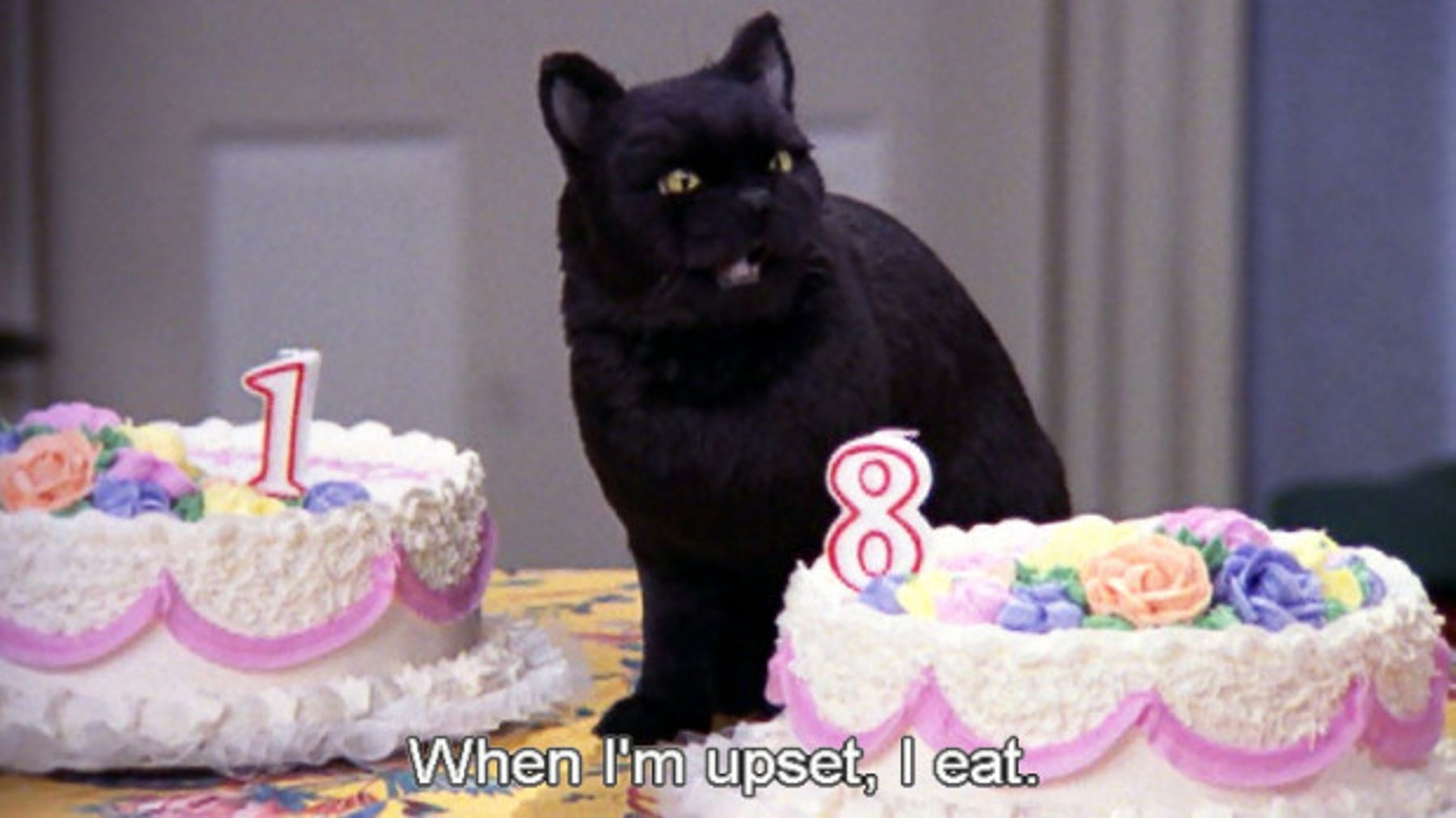 Salem From Sabrina The Teenage Witch\'s Best Quotes | Grazia