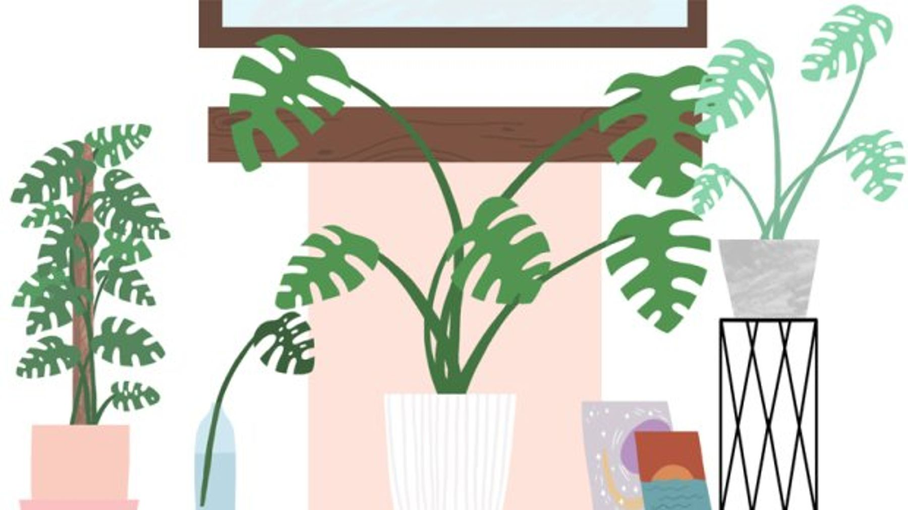 Houseplant Hack: Everything You Need To Know About Cheese Plants