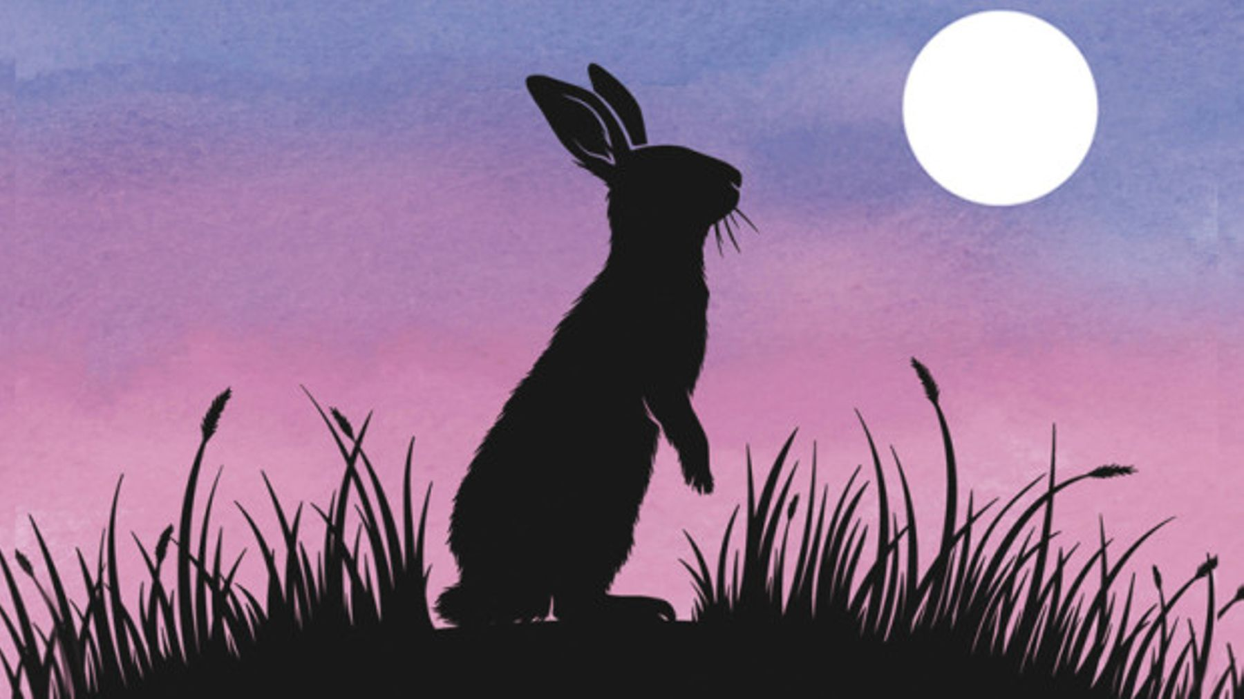 Netflix Are Remaking The Watership Down Movie  Prepare To Relive
