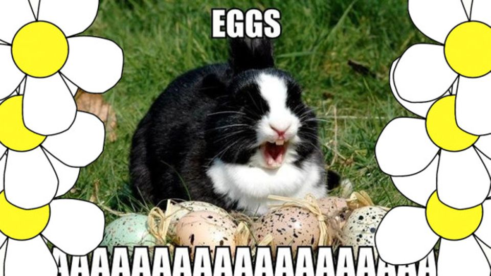 11 Easter Memes You Need For Social Media This Weekend For When
