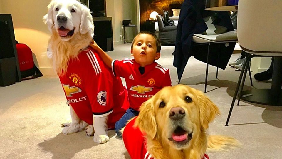 77293aa9c Alexis Sanchez dresses his dogs in United kits