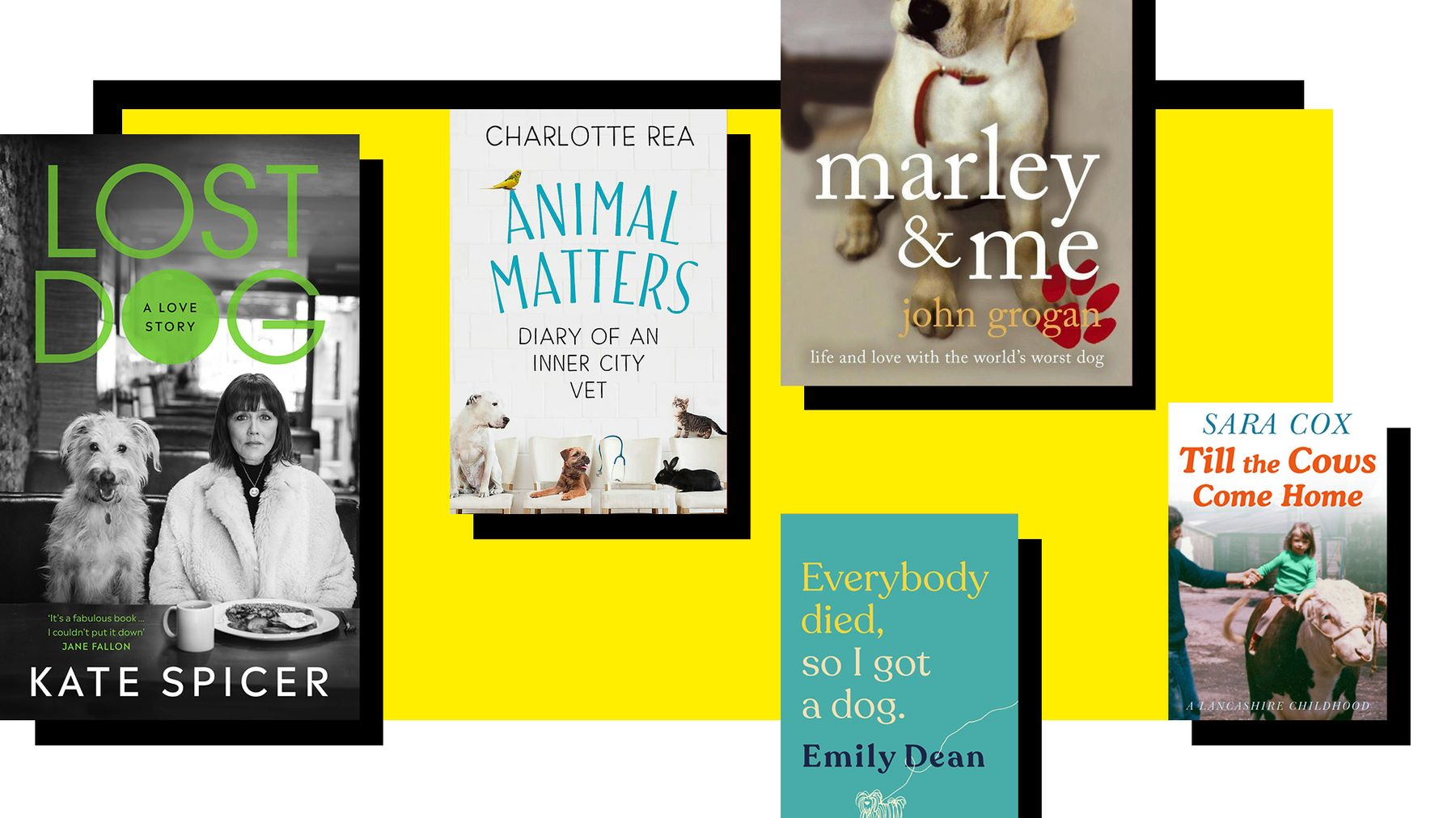 Lost Dog: A Love Story And Other Animal-Loving Books To Make