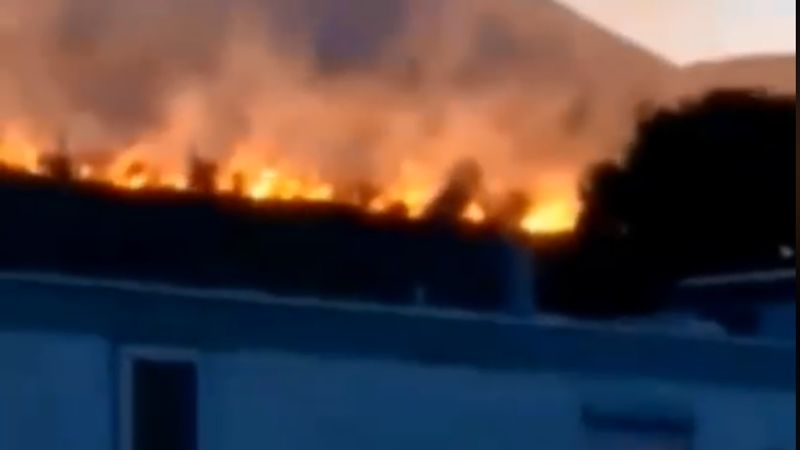50 firefighters tackle huge forest fire