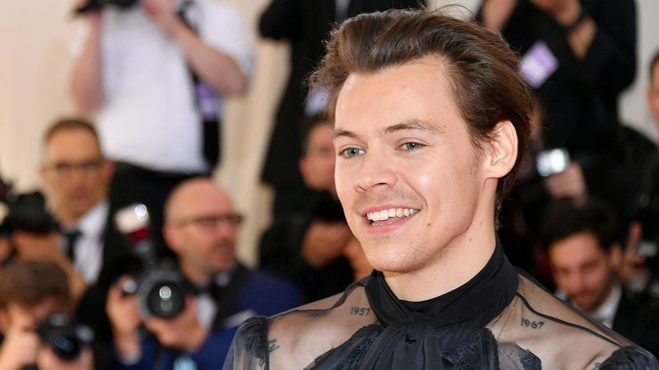 80 Weird And Wonderful Facts About Harry Styles Entertainment Heat