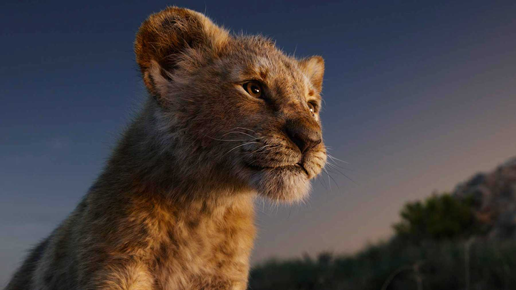 The Lion King 2019 Review Movie Empire