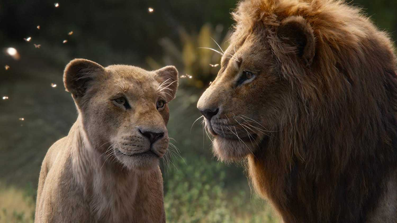 The Lion King (2019) Review | Movie - Empire