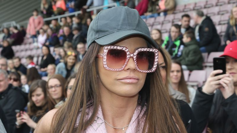 Katie Price fans break into her house through DOG FLAP