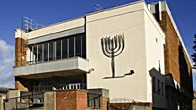 Teenager charged over synagogue 'Nazi Salute' video