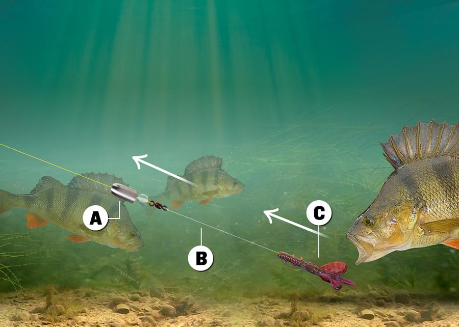 HOW TO TIE THE CAROLINA RIG | Advice | Angling Times