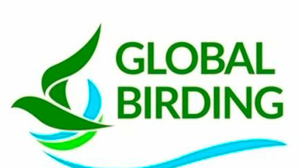 Global Birding Day, Saturday May 8th